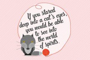 cat-proverbio-illustrazione