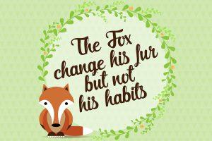fox-proverbio-illustrazione
